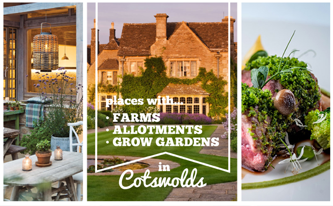 Field-to-table in the Cotwolds