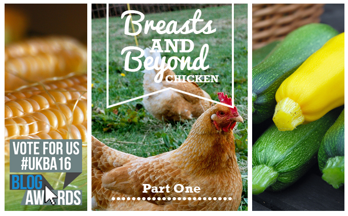 Breasts and Beyond Chicken Part One - fi