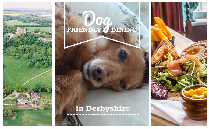 Dog Friendly Dining in Derbyshire - fi
