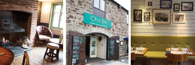 Olive Tree, Bude