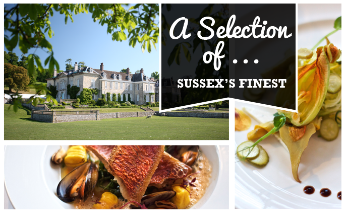 A selection of Sussex's finest